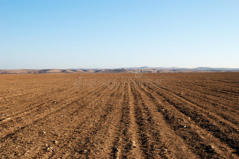 Empty field. Kind of the empty, dry and stony field in desert Negev, Israel royalty free stock photos