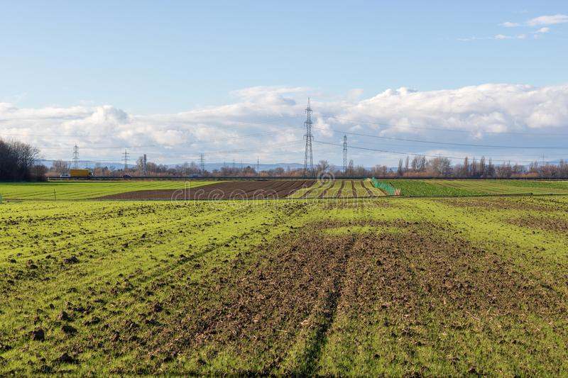Empty fields in winter in countryside. nature in Frankenthal - Germany stock photography