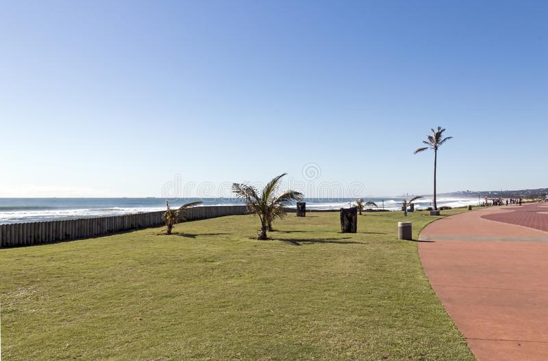 Grass Verge and Palm Trees Alogside Paved Promenade. Empty grass verge and palm trees alogside paved walkway promenade against blue coastal seascape in Durban stock photography