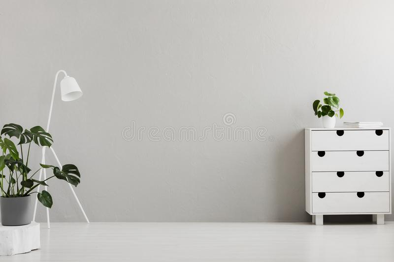 Empty gray bedroom interior with a modern dresser, an industrial floor lamp, a monstera plant and copy space place for a bed. Real stock image