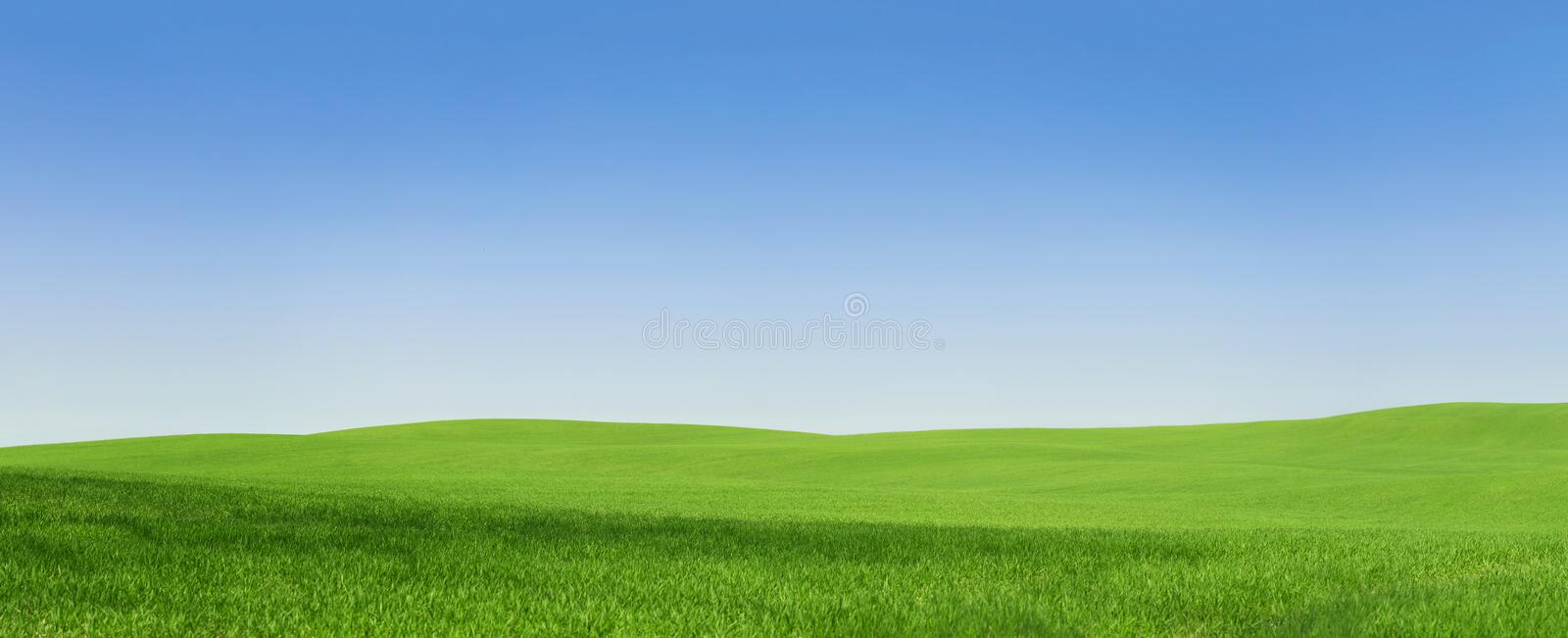 Empty green field. Panoramic view of an empty green field stock photo
