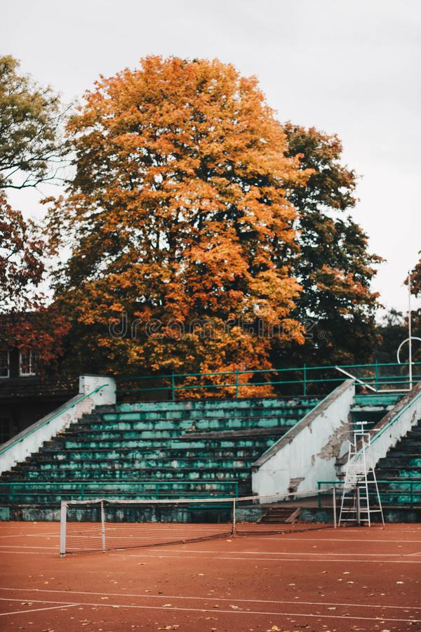 Empty Green And White Concrete Bleachers Near Brown Leaf Tree At Daytime Free Public Domain Cc0 Image