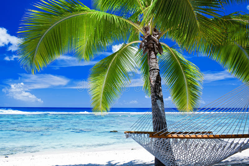 Download Empty Hammock Between Palm Trees Stock Photo - Image: 21174406
