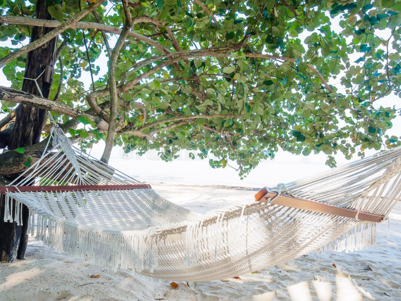 Empty hammock on the tropical beach with trees and beautiful sea stock image
