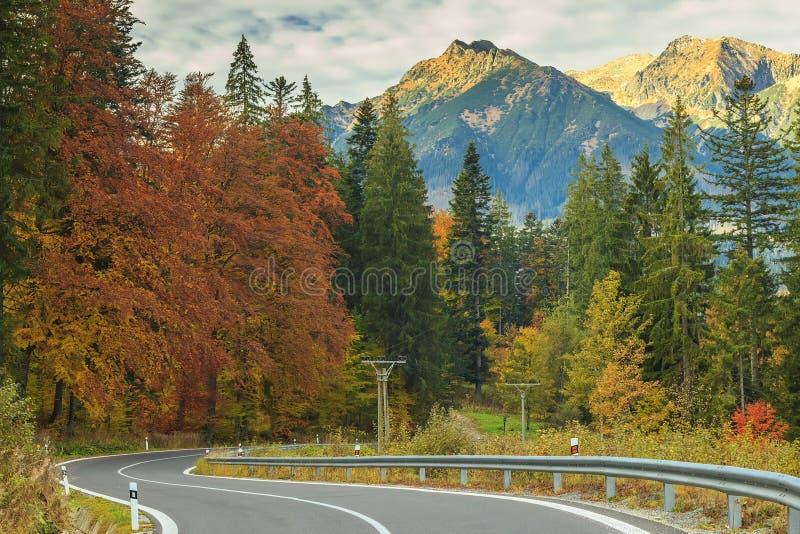 Empty highway and beautiful autumn landscape near Zakopane,Tatry,Poland. Curve asphalt road and Tatry mountains on Slovakia-Poland border royalty free stock photography