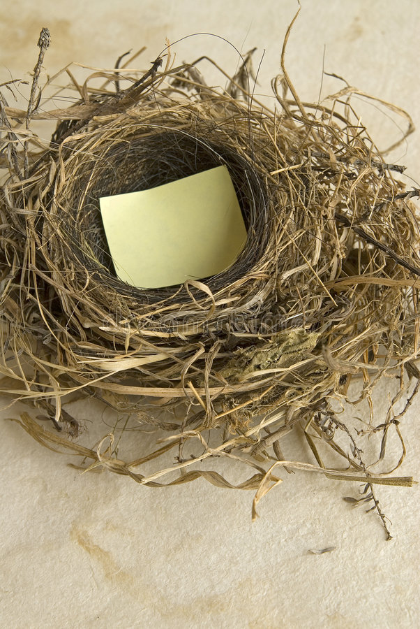 Download Empty nest stock photo. Image of finance, sell, savings - 1022770