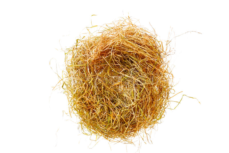 Empty nest from the yellow straw stock images