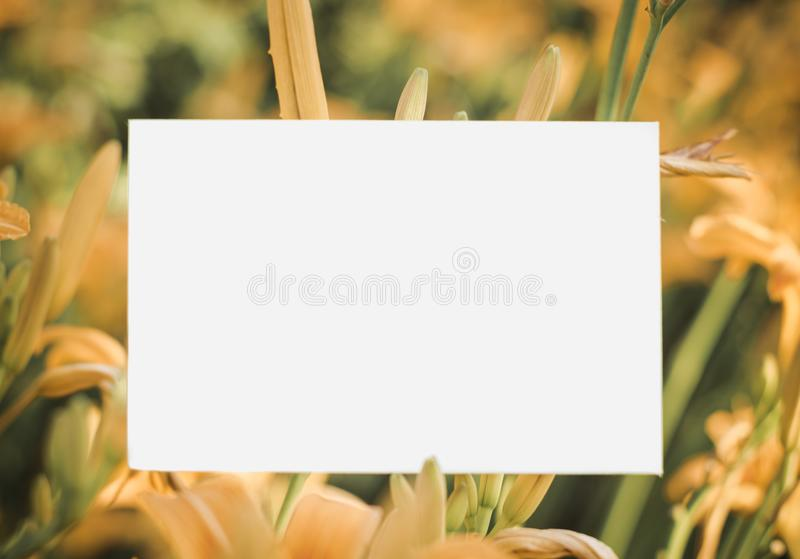 Lilies of the valley frame with pink lilies - love letter horizontal paper background stock photography