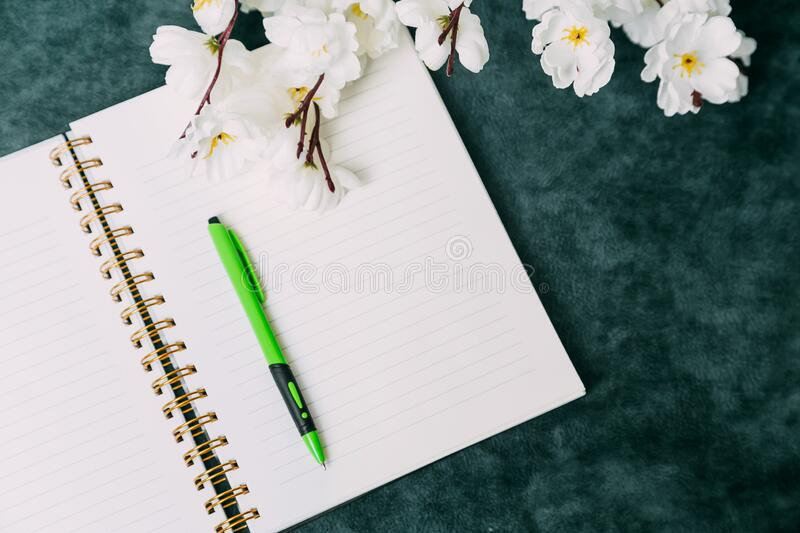 Empty notebook, pencil and white flowers on a green background. women`s daily planner, planning royalty free stock photos