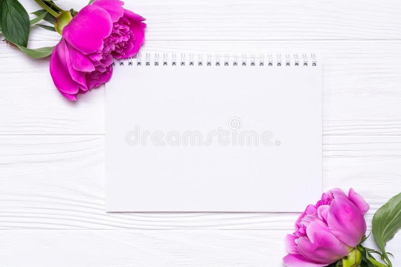 Empty notebook with place for text and peonies flowers on a white. Wooden background. View from above stock photos