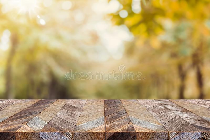 Empty old rustic wood plank table top with blur forest tree with royalty free stock photos