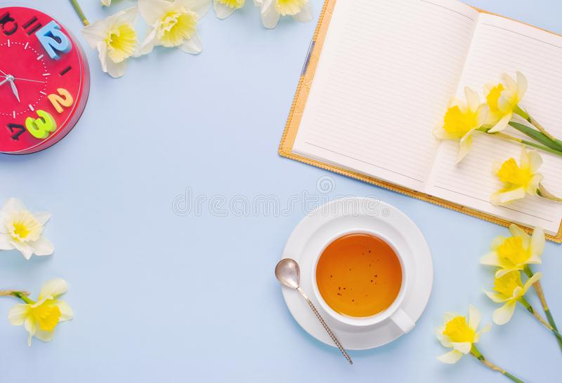 Empty Opened Notebook Cup of Tea Red Clock Yellow Daffodils on Light Blue Background. Woman working desk with cozy breakfast. Top. View royalty free stock images