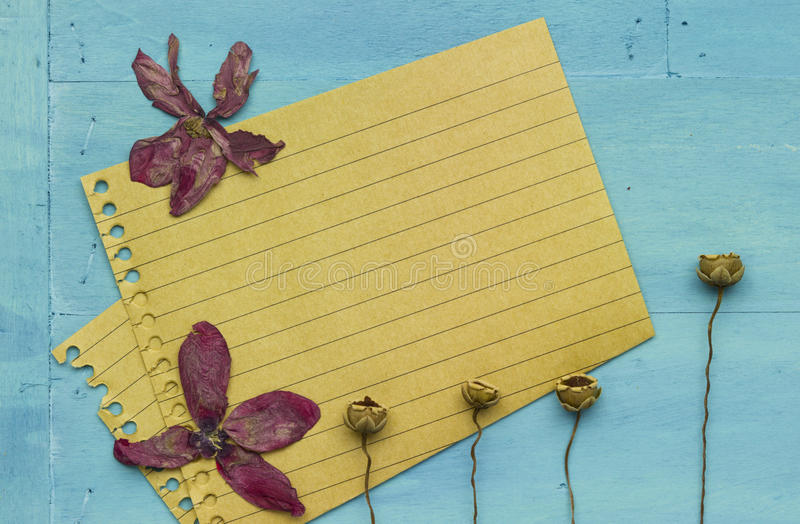 Empty paper with decoration. Empty sheet of recycling paper on blue marine style wooden background with dry wilted plant royalty free stock photo