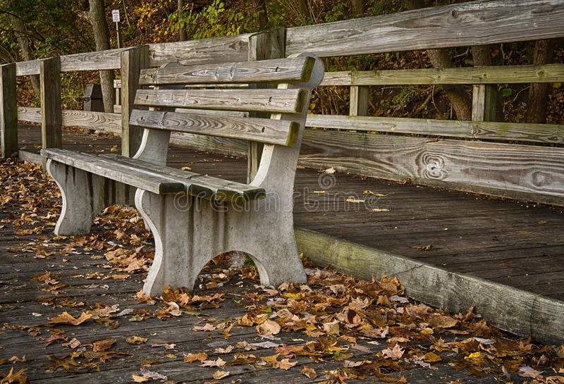 An empty park bench during Autumn. During Autumn a weathered park bench along the lake in Sharon woods Park located in Cincinnati, OH stock images