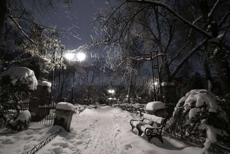 Download Empty Park Under Snow During Winter Cold Night Stock Image - Image of bench, frost: 23248353
