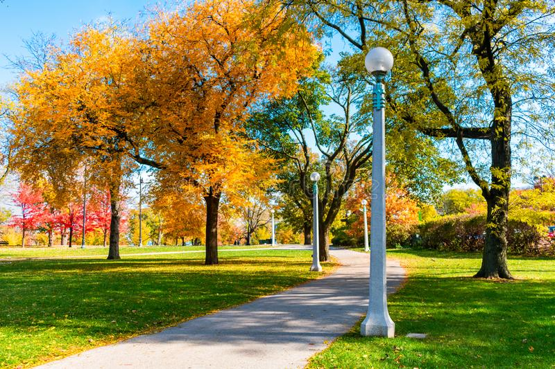 Walkway lined with Colorful Autumn Trees in Lincoln Park Chicago stock images
