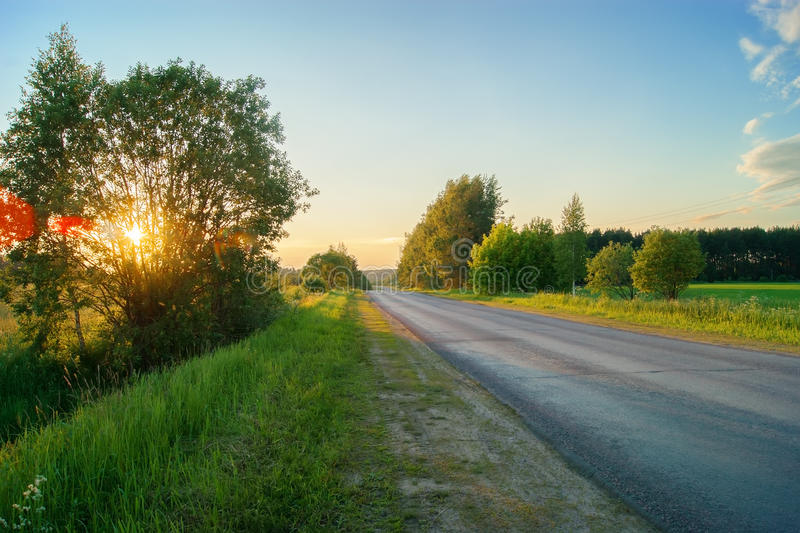 Empty paved road. In the forest at sunset royalty free stock photo