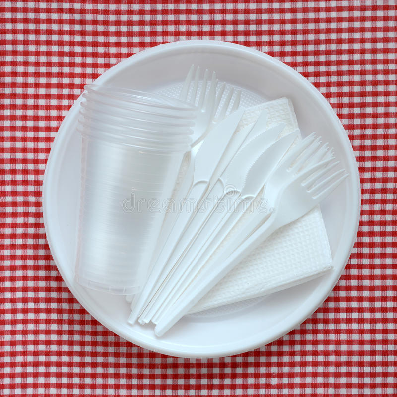 Empty plastic plate. Disposable plastic plate on a checkered cloth royalty free stock image