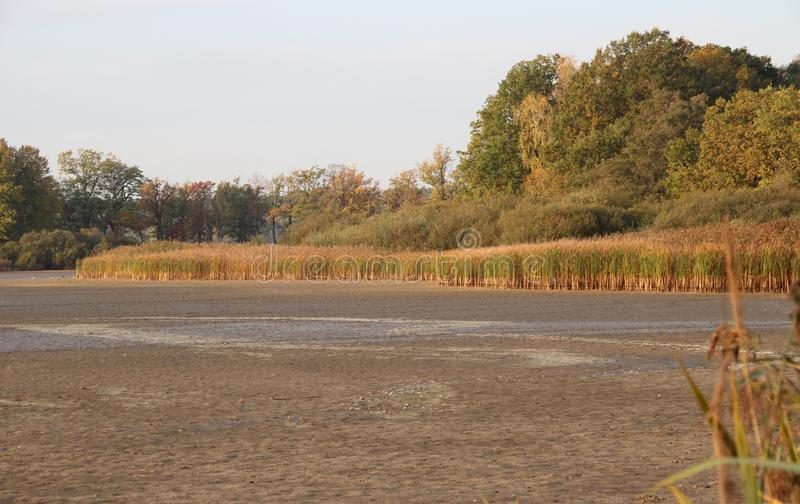 Empty pond in Trebonsko, fishing out stock photography