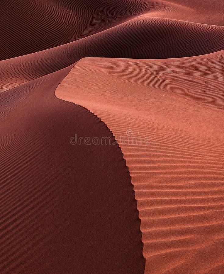 Empty Quarter Desert Dunes at Liwa, Abu Dhabi, Förenade Arabemiraten royaltyfri foto