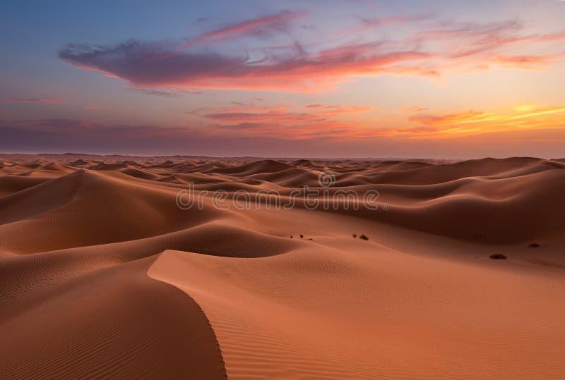 Empty Quarter Desert Dunes at Liwa, Abu Dhabi, Förenade Arabemiraten arkivfoton