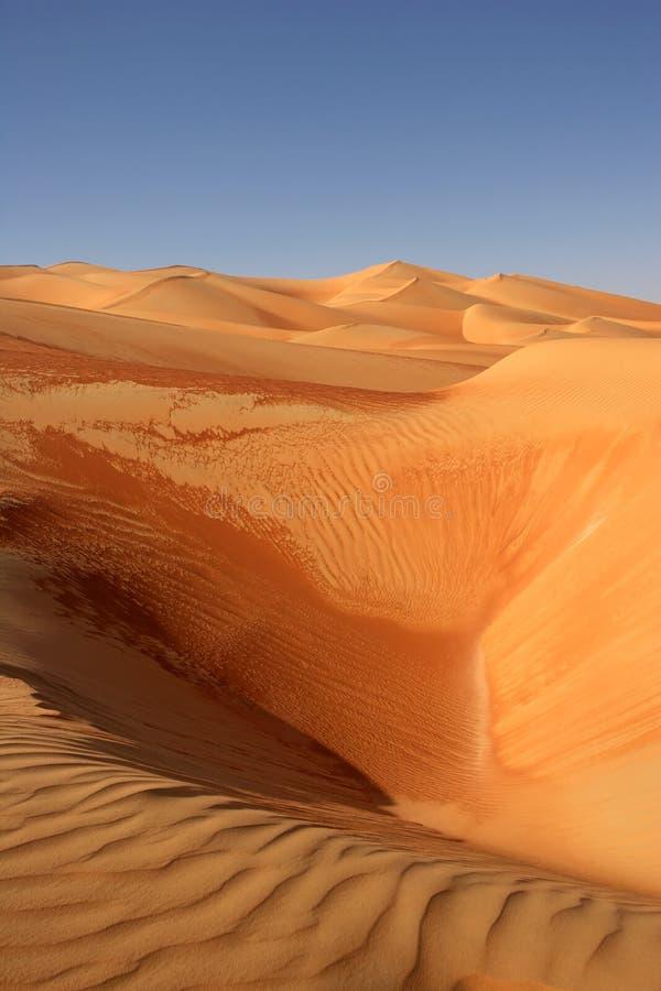 Empty Quarter Dunes royalty free stock image
