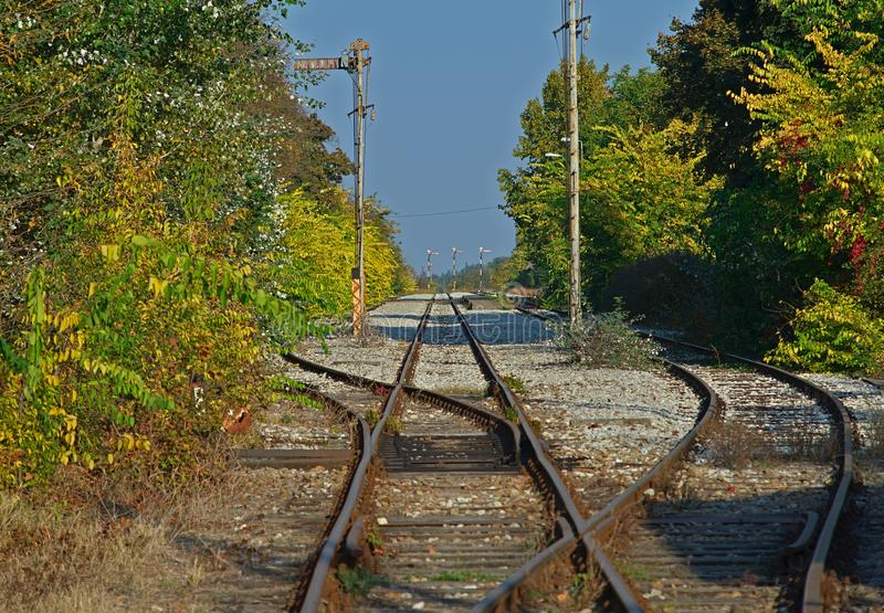 Empty railway tracks with greenery on both sides.  stock photo