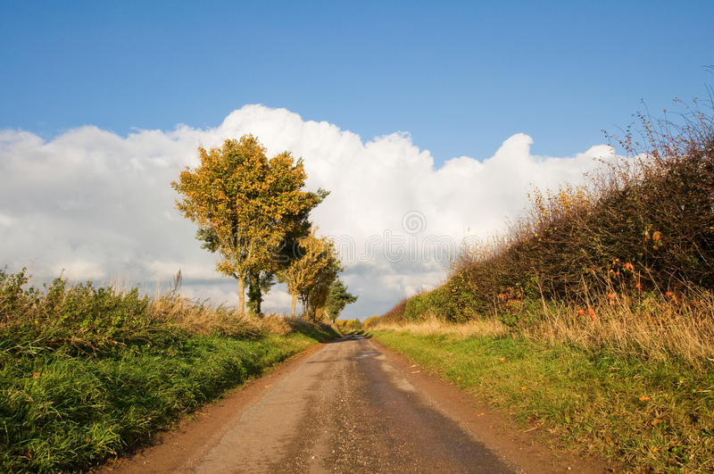 Download Empty road stock photo. Image of yellow, countryside - 17129778