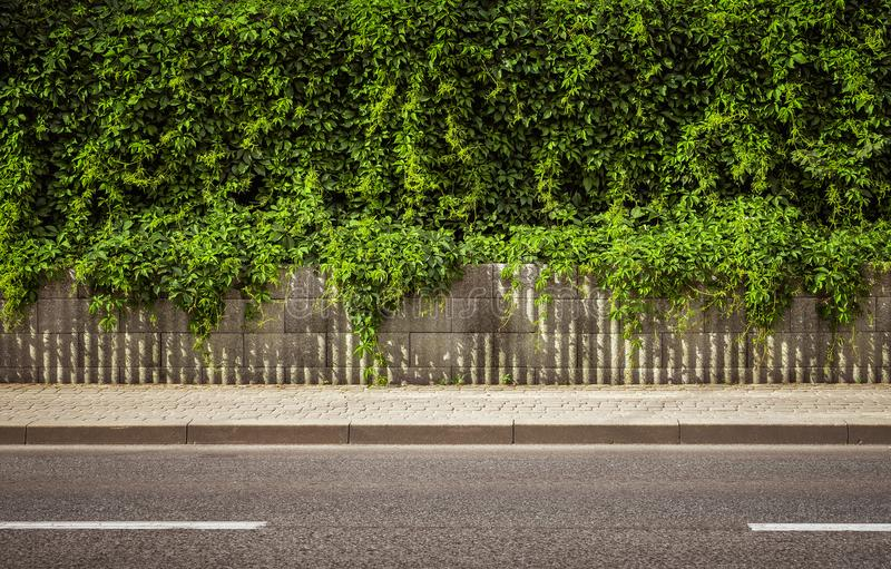 Empty road background. Empty city road background with copy spcae royalty free stock image