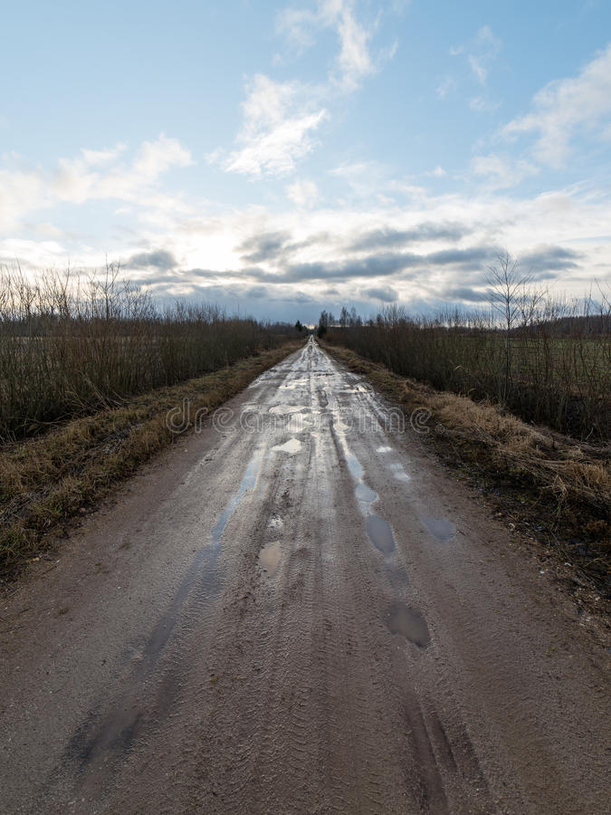 Empty road in the countryside in autumn. Empty road in the countryside with trees in surrounding. perspective in autumn royalty free stock image