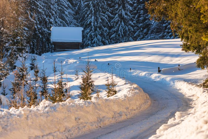 Snow-covered trees and bending empty, forest road in winter, Styria, Austria, Europe. Empty road in winter Rohrmoos-Untertal, Schladming, Schladming-Dachstein stock image