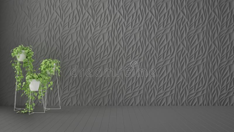 Empty room interior design, gray decorated molded panel, wooden dark floor and potted plant, modern architecture background with. Empty room interior design royalty free stock image
