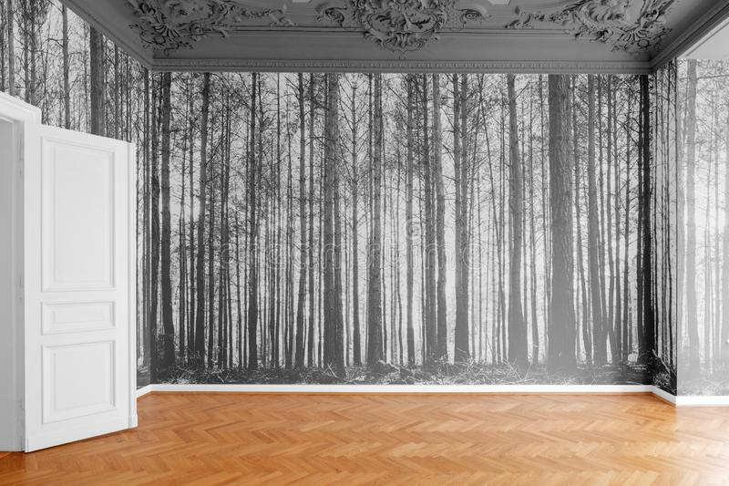 Empty room with photo wallpaper with forest landscape photography royalty free stock photography