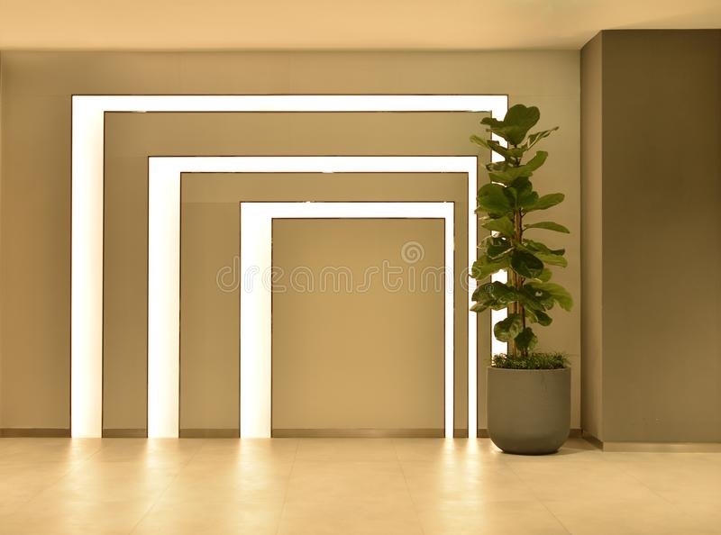 Empty room with tree pot and lights, interior design stock image