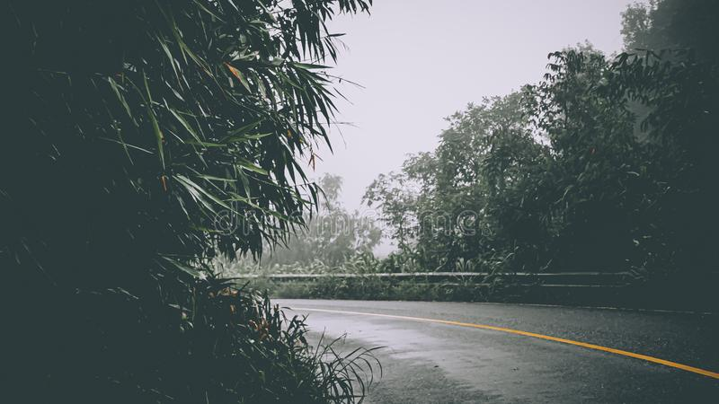 Empty Rural road with fog in the morning at countryside .Scene of road to mountain in Thailand close to Myanmar.  royalty free stock images