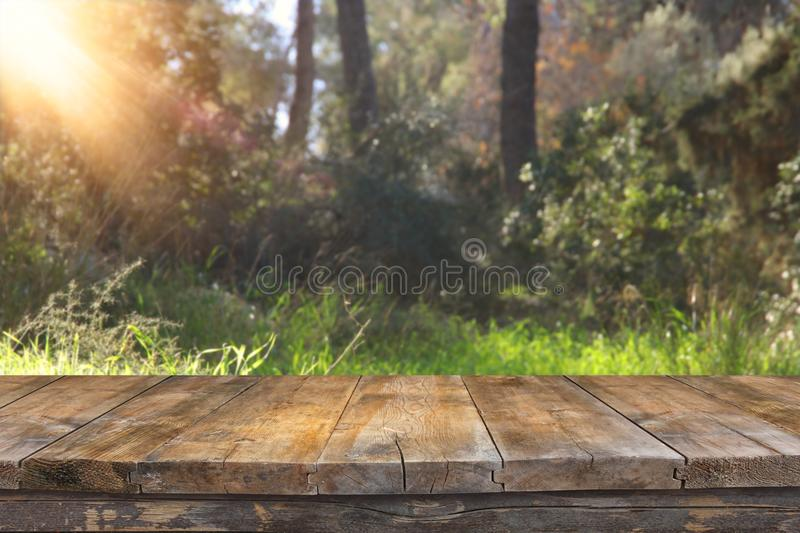 Empty rustic table in front of countryside background. product display and picnic concept. Empty rustic table in front of countryside background. product stock images