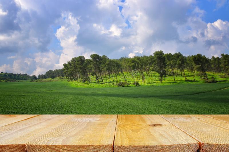 Empty rustic table in front of countryside background. product display and picnic concept. Empty rustic table in front of countryside background. product stock photos
