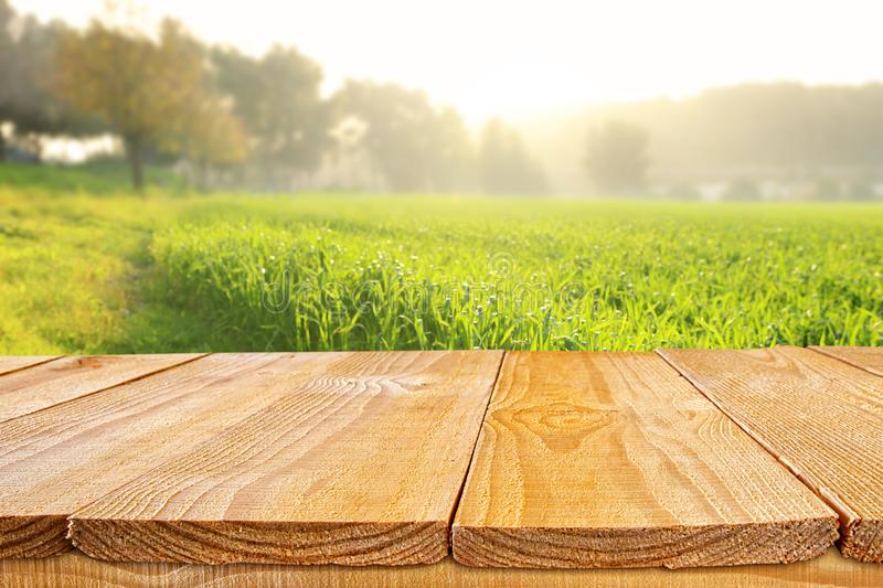 Empty rustic table in front of countryside background. product display and picnic concept. Wood plant nature outdoor field grass landscape fresh shelf spring royalty free stock image