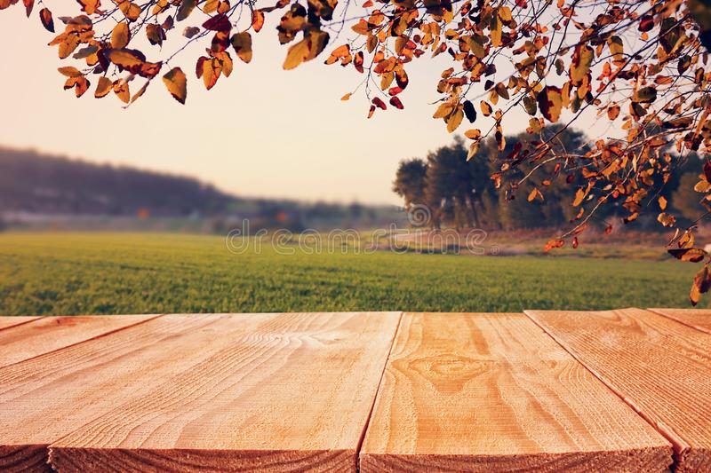 Empty rustic table in front of countryside background. product display and picnic concept. Wood plant nature outdoor field grass landscape fresh shelf spring royalty free stock photography