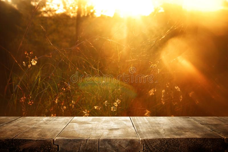 Empty rustic table in front of countryside background. product display and picnic concept. Wood plant nature outdoor field grass landscape fresh shelf spring stock photography