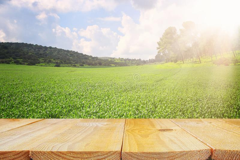 Empty rustic table in front of countryside background. product display and picnic concept. Empty rustic table in front of countrye background. product display stock images