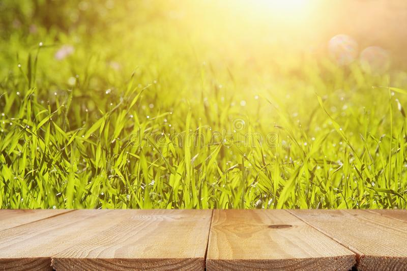 Empty rustic table in front of low angle view of fresh grass. product display and picnic concept. Empty rustic table in front of low angle view of fresh grass royalty free stock photography