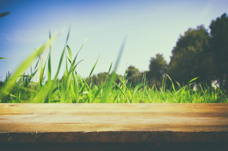 Empty rustic table in front of low angle view of fresh grass. product display and picnic concept. Empty rustic table in front of low angle view of fresh grass stock photo
