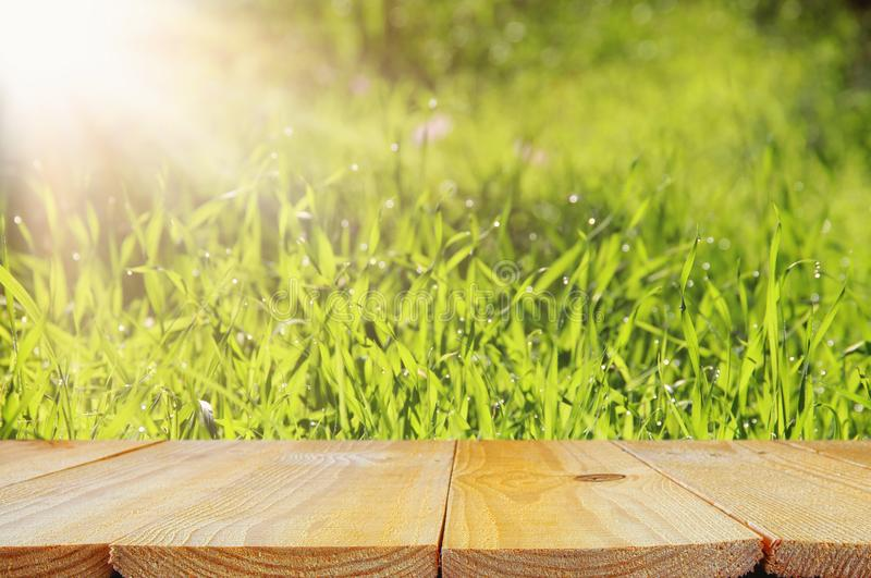 Empty rustic table in front of low angle view of fresh grass. product display and picnic concept. Empty rustic table in front of low angle view of fresh grass royalty free stock photos