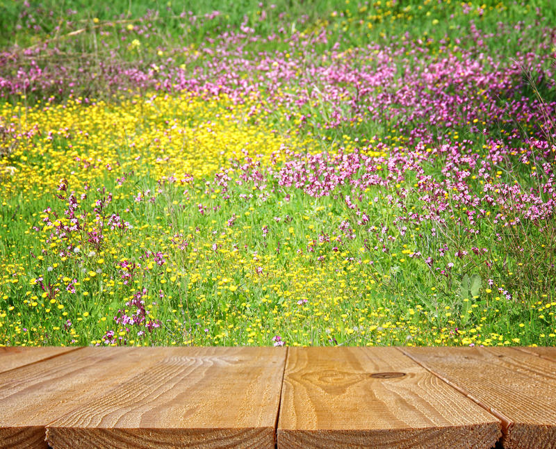 Empty rustic table in front of spring beautiful field flowers. Background. product display and picnic concept royalty free stock image