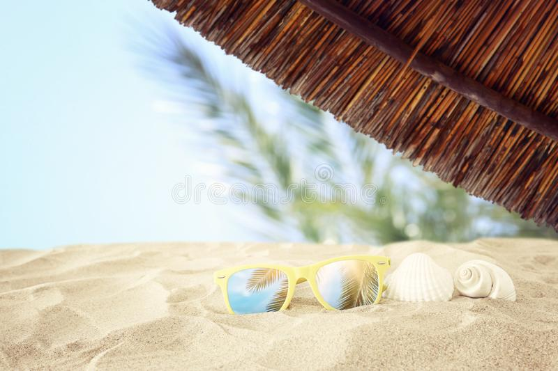 Empty sand beach, seashells and sunglasses in front of summer sea background with copy space.  royalty free stock photo
