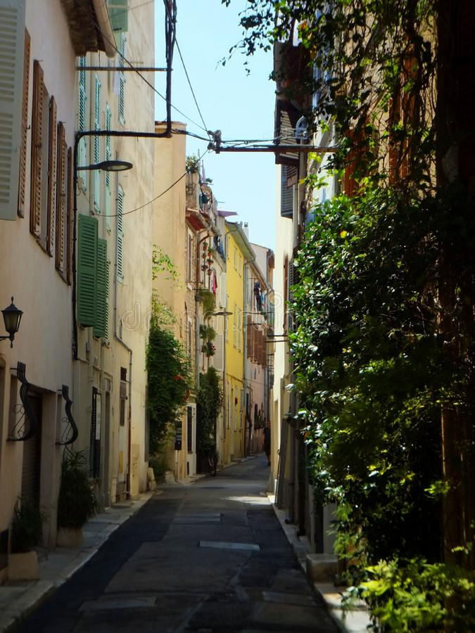 Empty shaded street in Antibes, Côte d`Azur, France. Houses covered in greenery and windows with colourful blinds stock photo