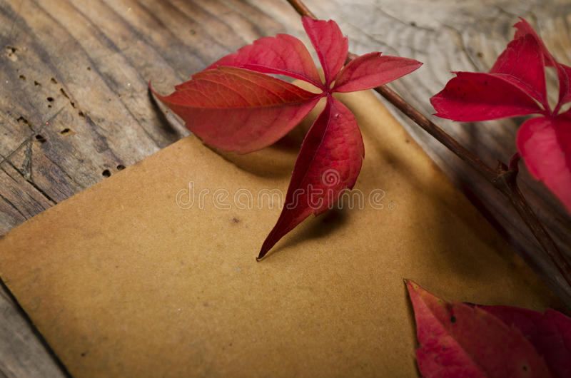 Download Empty Sheet Stock Photography - Image: 35476552