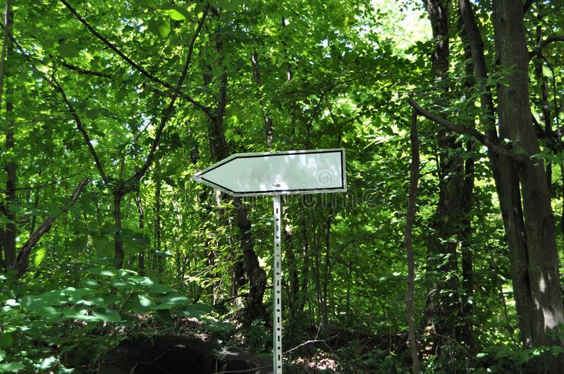 Empty sign in forest royalty free stock images
