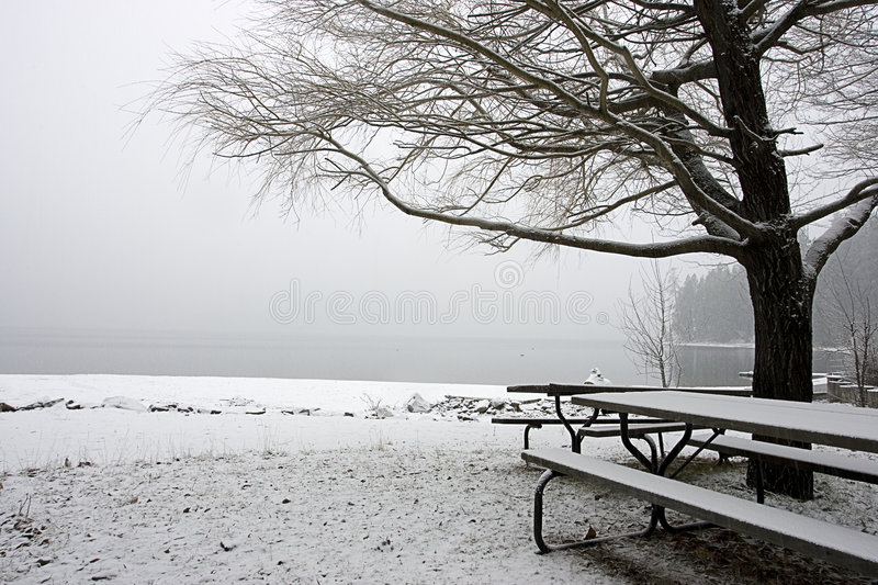 Download Empty Snow Covered Park In Winter. Stock Photo - Image: 7647368